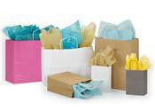 Store Supply Warehouse | Wholesale Kraft Paper Shopping Bags