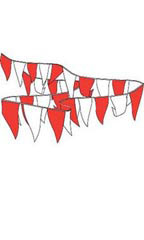 105' Pennant String - Red & White